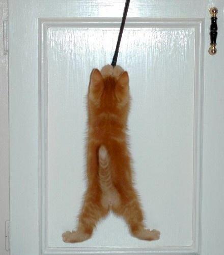 Hanging Around by FlutrByShutrBy
