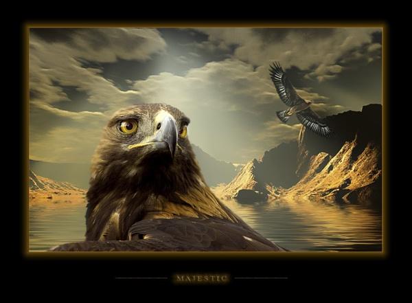 Majestic by kevski