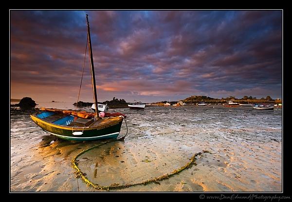 Belle de Birdo by Guernseydan