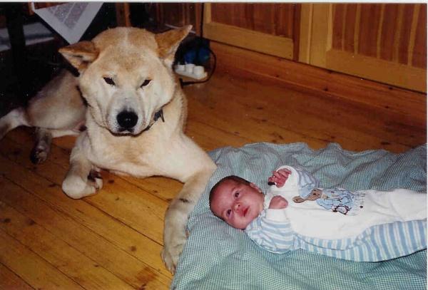 Babysitting by Captsaigon