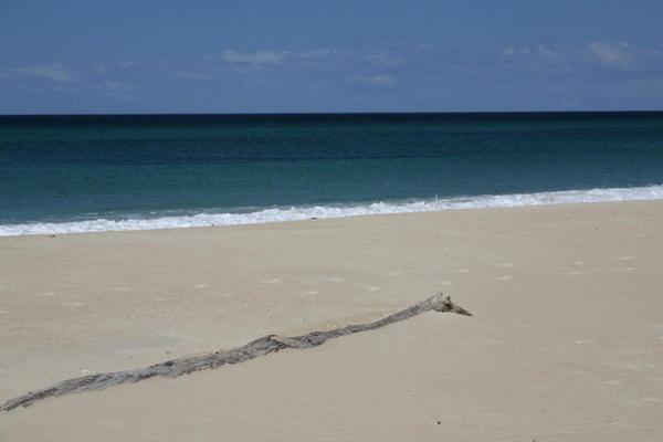 beach scene by mrberry