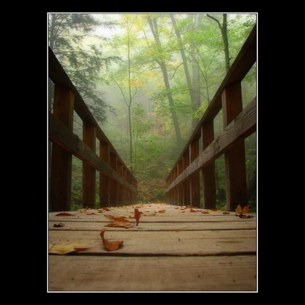 Foggy Bridge by mikears
