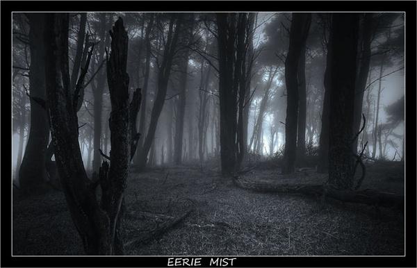 Eerie Mist by chrissycj