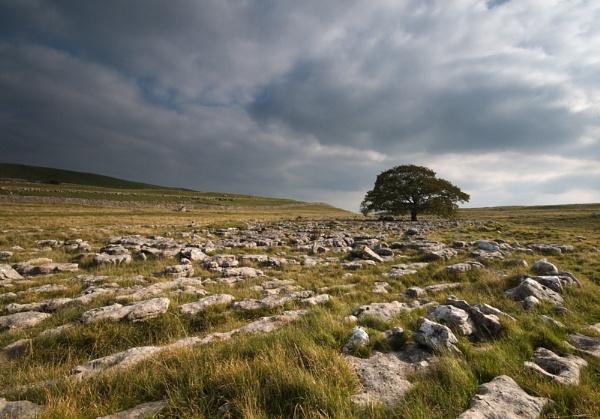 Yorkshire Dales 1 by Tony_W
