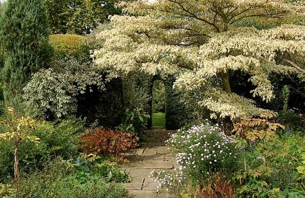 Secret Garden by BillM