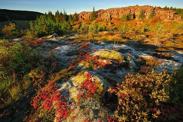 Autumn Tundra by simon_stacey
