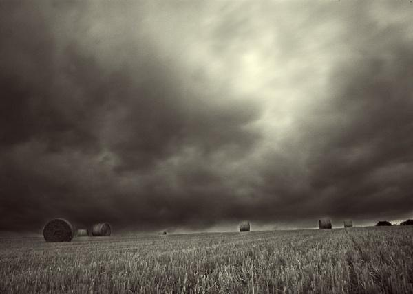 Dark Days by Consulo