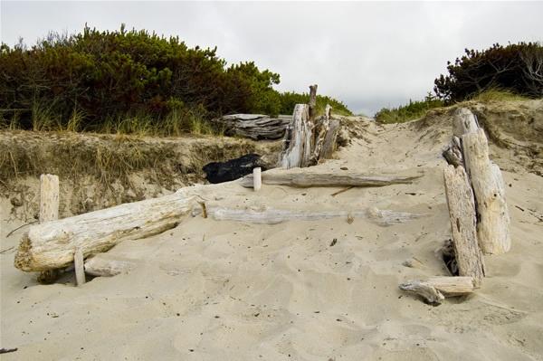 Beach path by lkerns