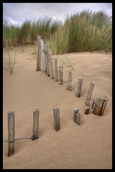 dunes by garyg
