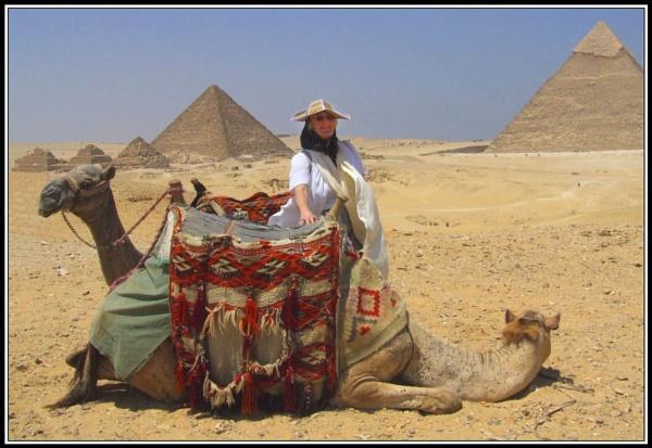 2 Headed Camel by moglen