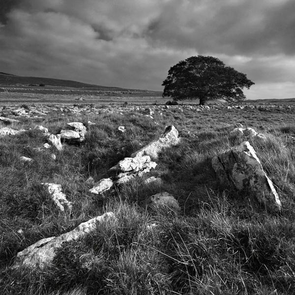 Yorkshire Dales 2 - B&W by Tony_W