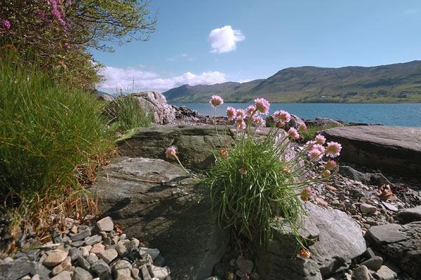 Loch Broom by BillM