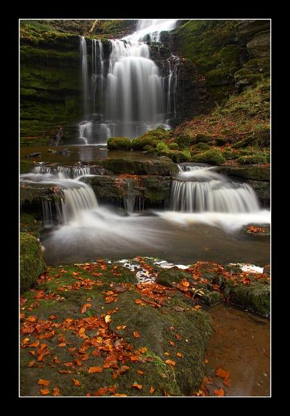 Autumnal Scaleber by jeanie