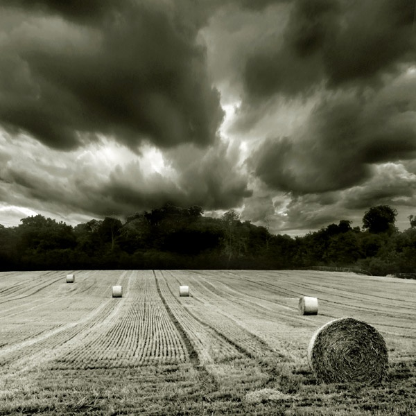 Stormy Weather by shane