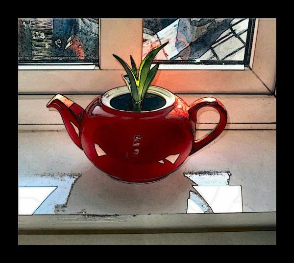 Teapot Aloe by RoseTeal