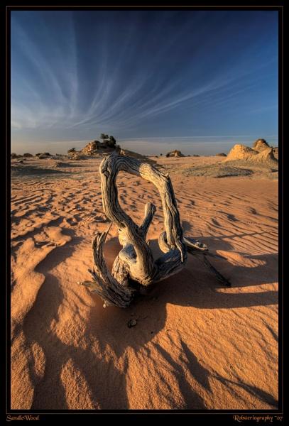 SandleWood by Robsterios