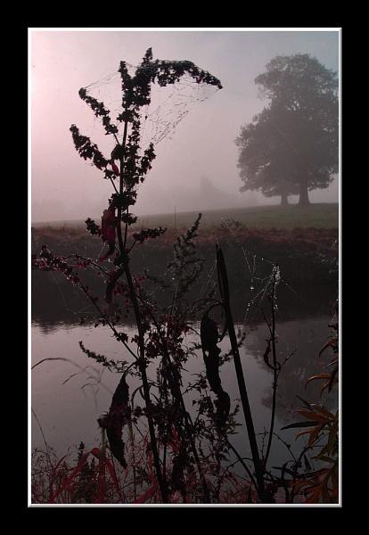 Misty Shropshire by bobalot