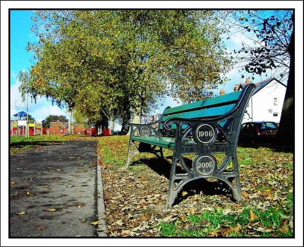 Centenary bench by helenlinda