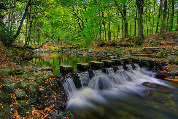 The Stepping Stones by StevenHanna