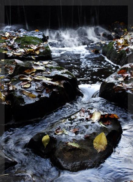 Vindolanda stream by greensurfingbear