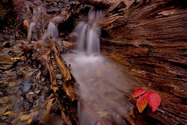 Bridal Veil Falls by conrad