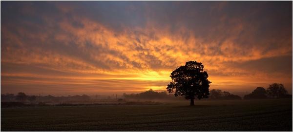 Dawn by Nigel_95