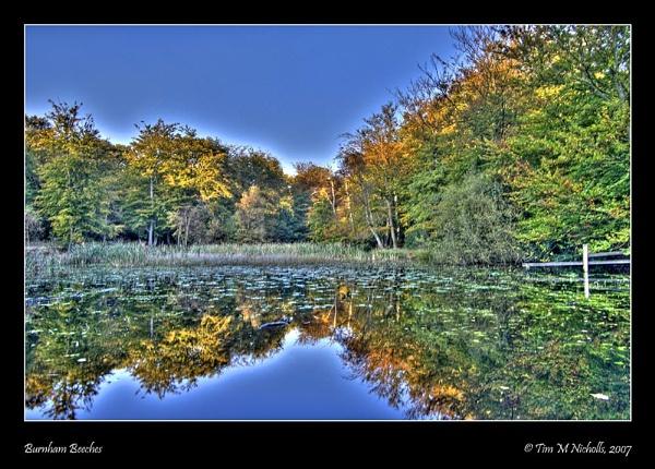 Autumn Arrives (again) by Ammonyte