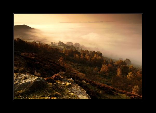Misty Curber by TrevorPlumbe