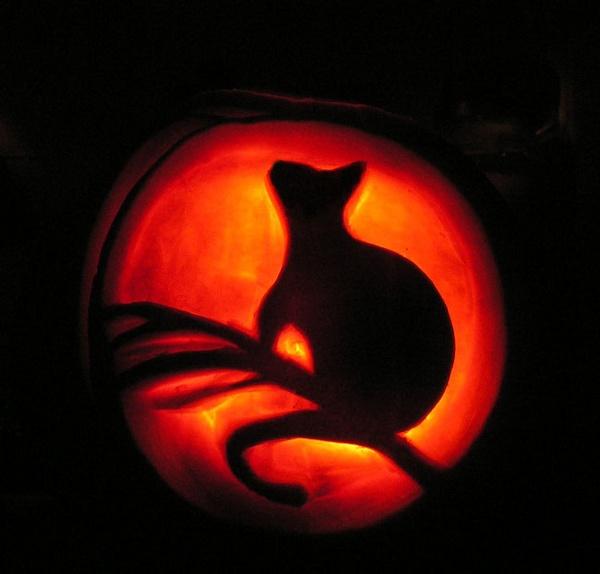 Pumpkin practice by Rckhopper