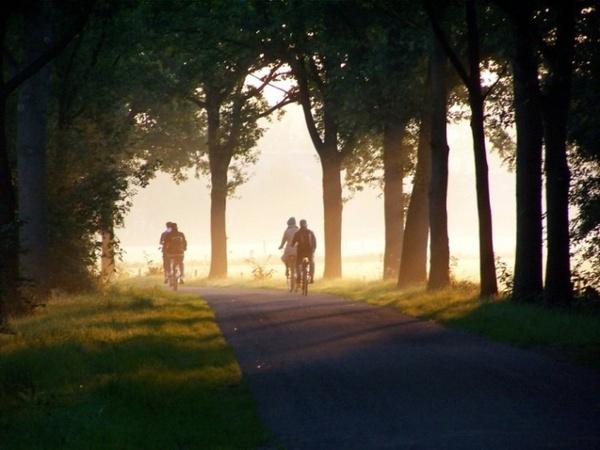 Bicycles by Jimbotha
