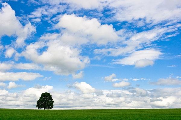 Big Sky by psiman