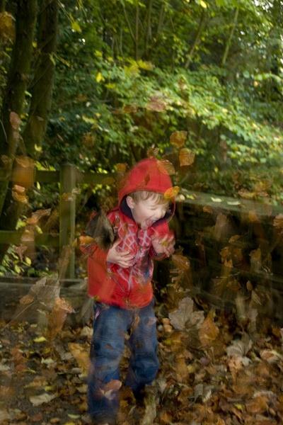 autumn fun by greensurfingbear