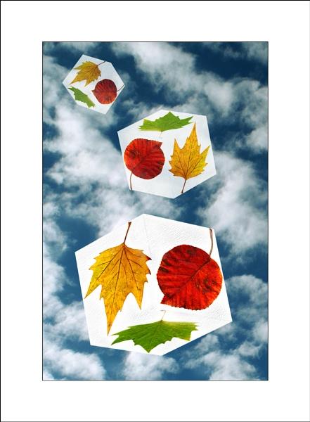 Tumbling leaves by C_Daniels