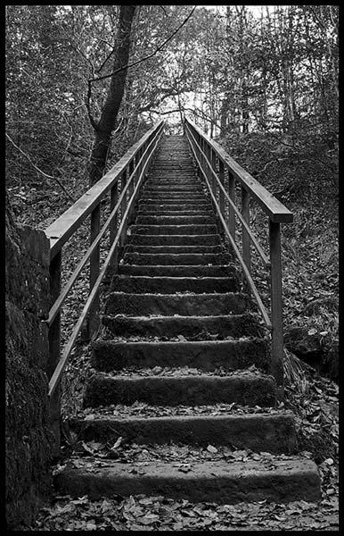 B&W steps by wbk666