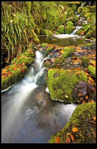 Cascading Falls by wamp