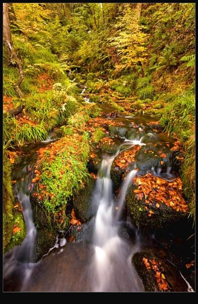 Twin Falls by wamp