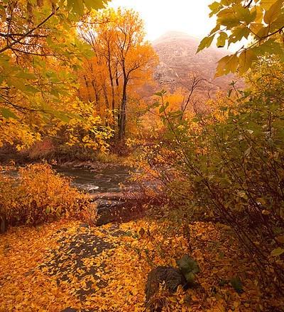 Provo Canyon by conrad