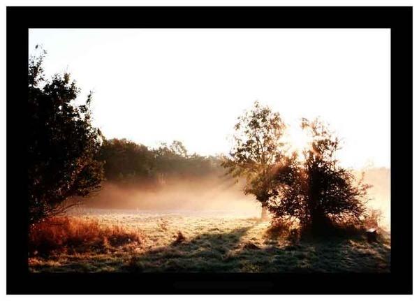 First Sun Light by markspice