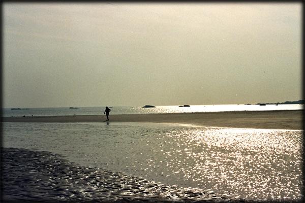 golden solitude by NATURAL_mente