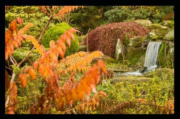 Waterfall by morga