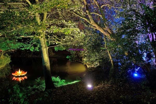 Garden of Light 1 by RoyChilds