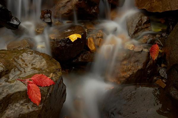 Bridal Veil Falls 2 by conrad