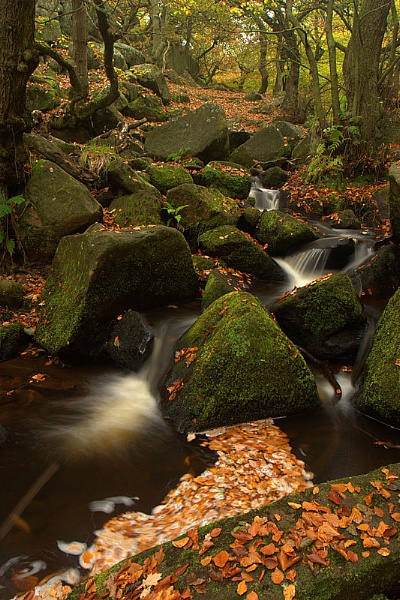 Padley Gorge 2 by dcash29