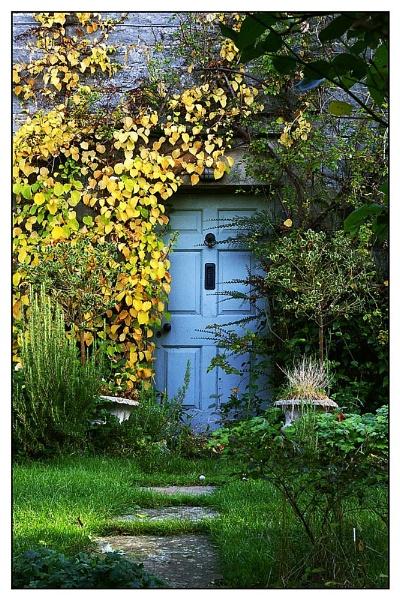 The Forgotten Door by davidhu