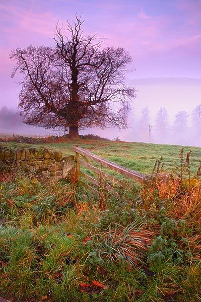 Stanton Mist 2 by Nickscape