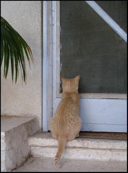 Nobody home? by museebfoto