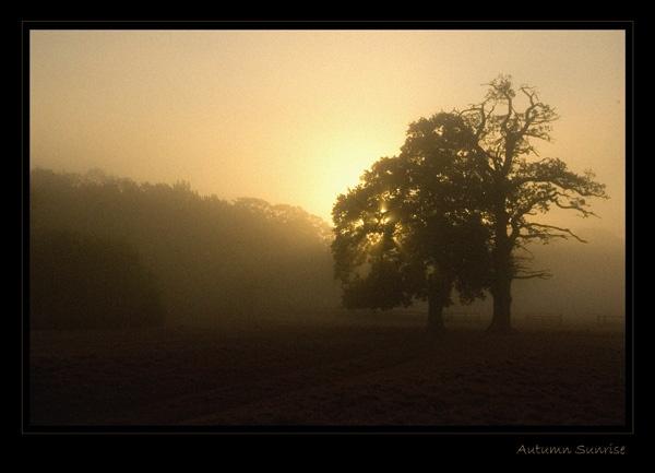 Autumn Sunrise by carbonbianchi