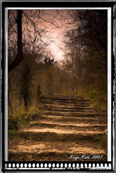 Dovedale steps by Strobekid