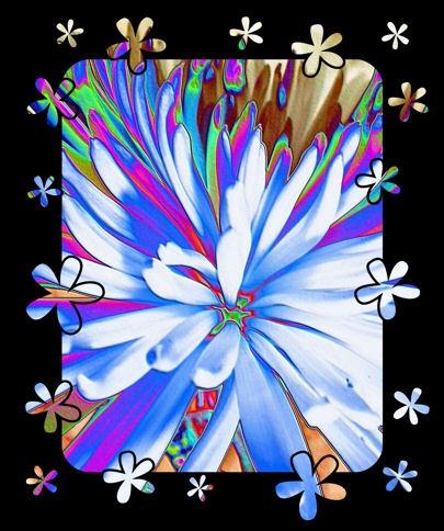 flower art by jaecat