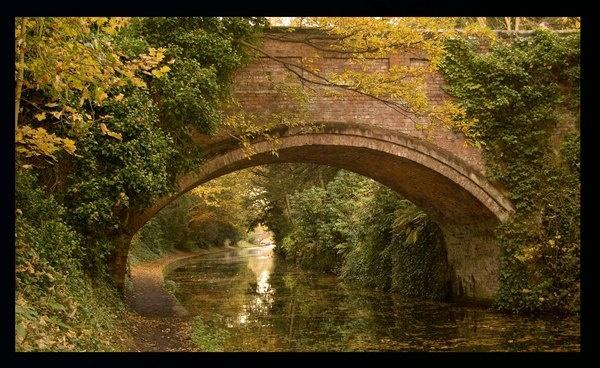 Walton Bridge by morga